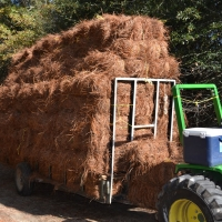 transporting-pine-bale-to-load-site.jpg